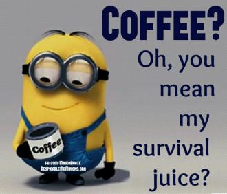 Survival Coffee